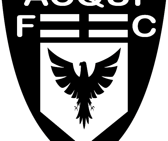 https://www.acquicalciofc.it/wp-content/uploads/Acqui-calcio-572x480.png